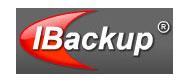 ibackup_Partner_logo